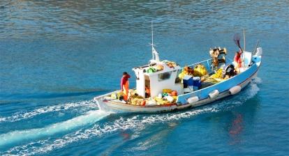 Τροποποίηση  Εγκυκλίου Μηνιαίας Δήλωσης Παραγωγής Επαγγελματικών Αλιευτικών Σκαφών <10μ