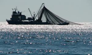 Αναστολή της αλιείας με βιντζότρατα.
