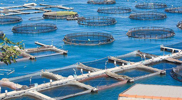 Παραχώρηση  θαλάσσιας έκτασης για μονάδα  ιχθυοκαλλιέργειας