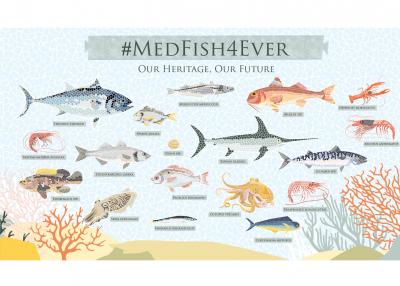 42η  ετήσια σύνοδος της Γενικής Επιτροπής Αλιείας για τη Μεσόγειο: ορόσημo για τη Μεσόγειο και τη Μαύρη Θάλασσα